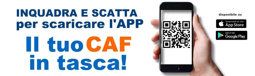 Il Caf Fenalca è 4.0: scarica la nostra App
